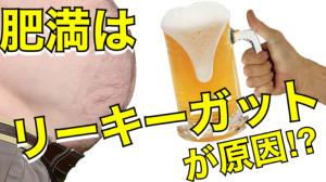 肥満は【リーキーガット】が原因?!