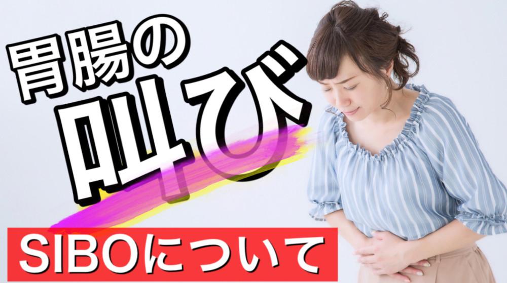【胃腸の叫び】SIBOの種類「徹底解説」